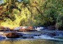 Wanda: Flora y fauna nativas, cascadas y aire puro