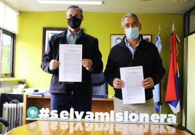 """Entrevista al CEO de Arauco: """"Proyectamos nuevos activos ambientales y más inversiones en Misiones"""""""